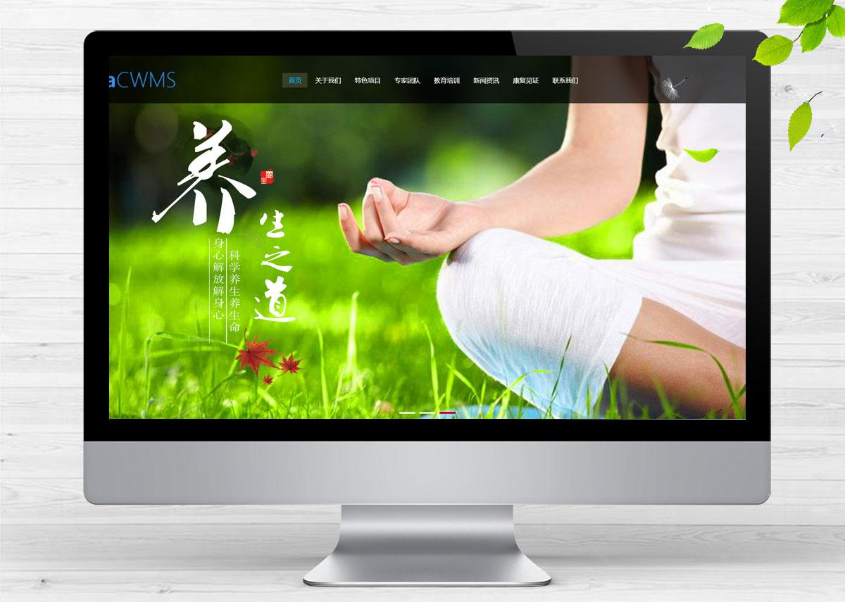 响应式经络养生健康类呼啦网站模板H-206